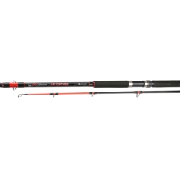 Wędka Teritory Cat Fish 270cm 300-500g Mikado