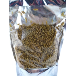 Agro Insekt Pinka Suszona w Melasie 250g